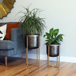 Aspire - Rizzy Midcentury 2-Piece Planter Set - Drawing inspiration from mid-century modern design, this set of planters make a great addition to any modern home or office. Crafted from metal and featuring a gold finished base contrasted by dark (almost black) colored pots.