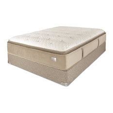 Chattam & Wells - Chattam & Wells Eastern King Hamilton Latex Pillow Top Mattress & Box - Mattresses