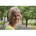 Green Tree Garden Design Ltd's profile photo