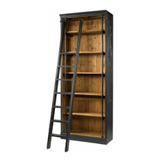 Irondale Ivy Bookcase With Ladder