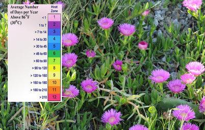 Come Riconoscere la Zona Climatica del tuo Giardino