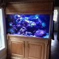 Aquatic Art Technologies, LLC's profile photo