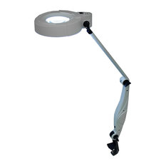 Lumiram Comfort View Color Balanced Clamp On Magnifying Lamp