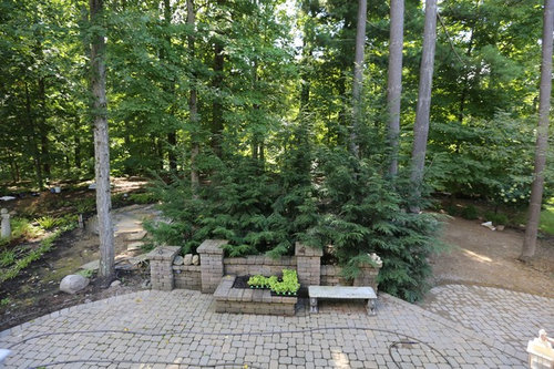 Ideas for landscaping under pine trees.