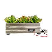 4-Port USB Charging Station Artificial Grass Succulent Planter, Zebra