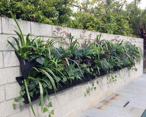 Orchids Garden Design arrangement garden orchid Saveemail
