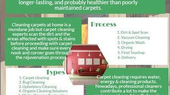 Lotus Green Carpet & Rug Care
