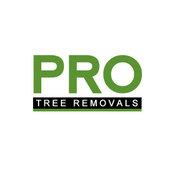 Pro Tree Removal Brisbane's photo