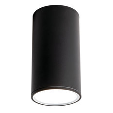 Everly 1 Light Outdoor Ceiling Light in Black