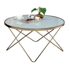 Bowery Hill Coffee Table in Frosted Glass and Champagne