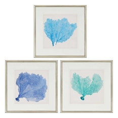Paragon Naturals Coastal Sea Fan II Pack of 3 Wall Art