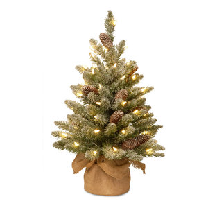 2' Snowy Concolor Fir Tree With Battery Operated LED Lights