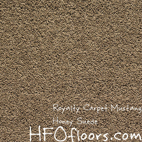 Royalty Carpet Cleaning Floor Matttroy