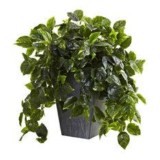 Hanging Pothos With Slate Planter UV Resistant, Indoor/Outdoor