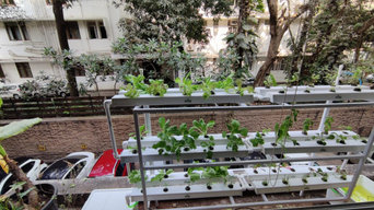 Ashiesh Shah- Hydrophonic Kitchen Garden