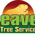 Beaver Tree Services LLC's profile photo
