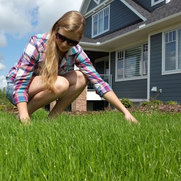 Calgary lawn Solutions Inc.'s photo