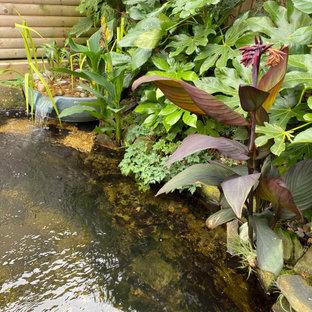 Ispirazione per un patio o portico tropicale di medie dimensioni e dietro casa con fontane, pedane e nessuna copertura