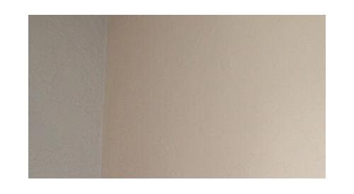 Couleur des murs et choix du parquet pour un séjour