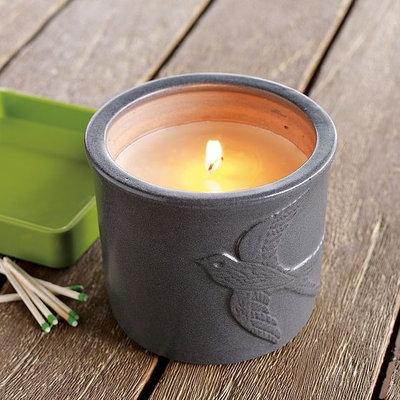 Modern Candles Carter & Cunningham Candle Pot