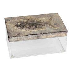 "Sagebrook Home Resin/Acrylic Fossil Box 7.78"""