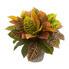 Garden Croton Artificial Plant in Weathered Oak Planter, Real Touch