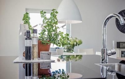 Så får du kryddväxterna att leva längre i köket
