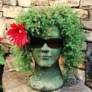Shady Grove Landscape Company's photo