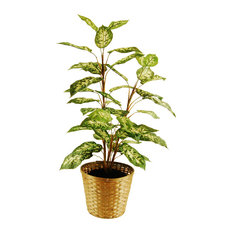 Dieffenbachia Floor Plant, Basket With Faux Dirt