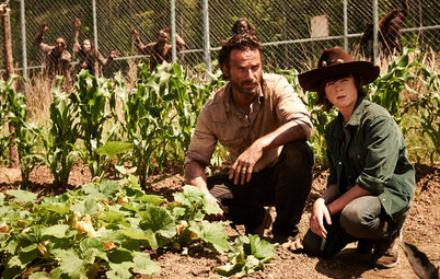 How to Survive an Epidemic of Walking Dead