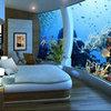 Стоит ли размещать аквариумы в зале?
