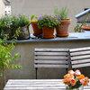 Üppig wie Wildblumenwiesen: Quereinsteigerin macht Berlins Dächer schön