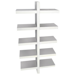 Essa Wall Mounted Floating 5-Tier Display Shelf, White