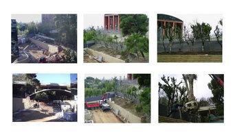 PLANTACIO GRANS EXEMPLARS