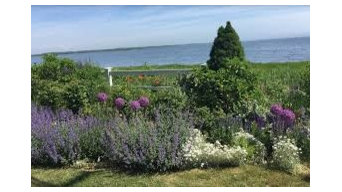 Naturalized Coastal Garden