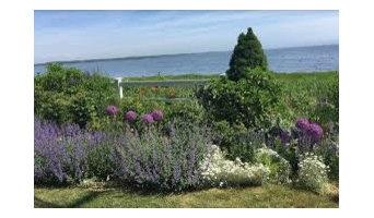Naturalized Coastal Garden