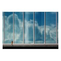 """Birdwatching TV"" Photo Print, Art Poster, 100x70 cm"