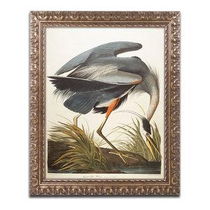 Louisiana Heron John James Audubon Wildlife Bird Nature Print Poster 16x20