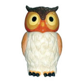 11 Inch 11 Inch Owl Staring Straight at You Multi-Colored Cookie Jar