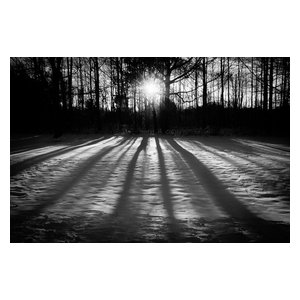 """Winter Shadows"" Black & White Landscape Unframed Wall Art Print, 20""x30"""