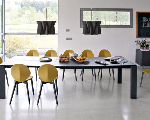 basil chairs by calligaris dining sets