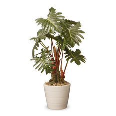 "21"" Garden Accents Philodendron Flower"