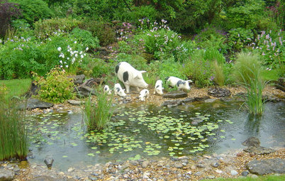 How to Design Your Garden so it Will Attract Wildlife