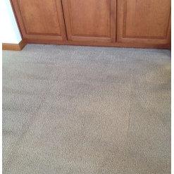Continental Carpet Care Inc - Bellevue