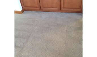Before & After Carpet Cleaning in Bellevue, WA