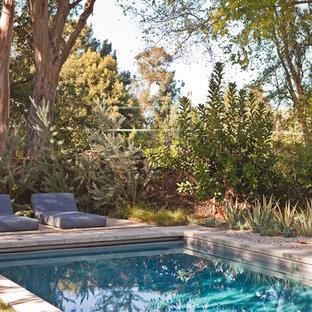 ロサンゼルスのミッドセンチュリースタイルのおしゃれなプールの写真