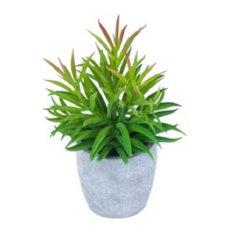 Urban Pot With Succulents