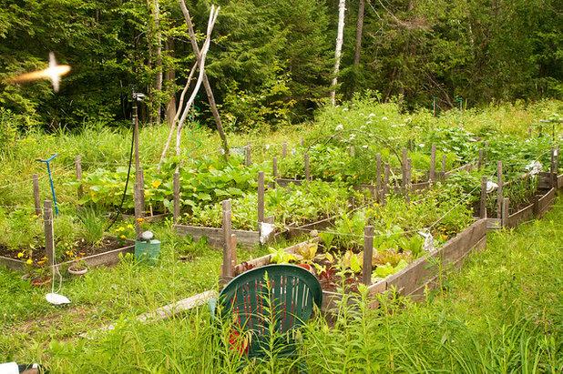 Scoprite le gioie dell orto rialzato più facile e produttivo