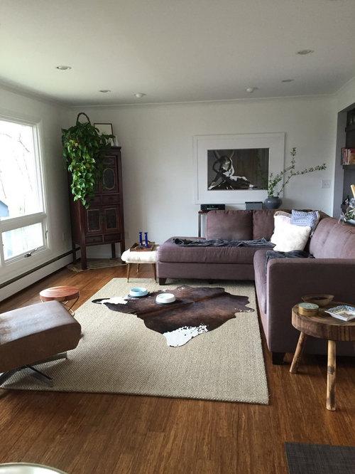 Tremendous Dog Sun Have Ruined Sofa What Next Dailytribune Chair Design For Home Dailytribuneorg