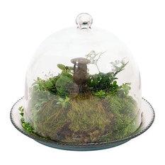Achla Bell Jar Terrarium III